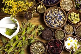28 plantes médicinales pour une bonne santé